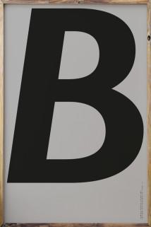 YO-TYPE B