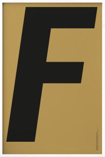 YO-TYPE F